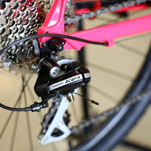 Cannondale-Foray 1