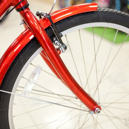 Schwinn-Town and Country