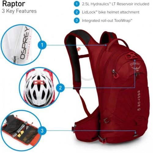 Osprey-Raptor