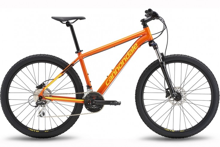 Cannondale-Catalyst 1