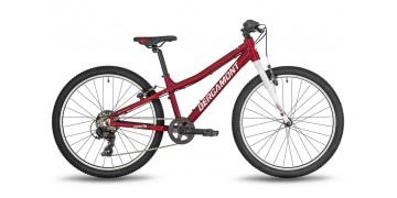 Подростковый велосипед Bergamont Revox 24 Lite 2019