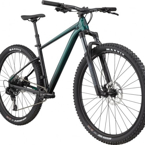 Cannondale-Trail SE 2